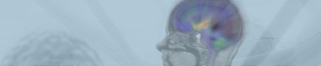 Μνήμη: τα είδη και οι διαταραχές της