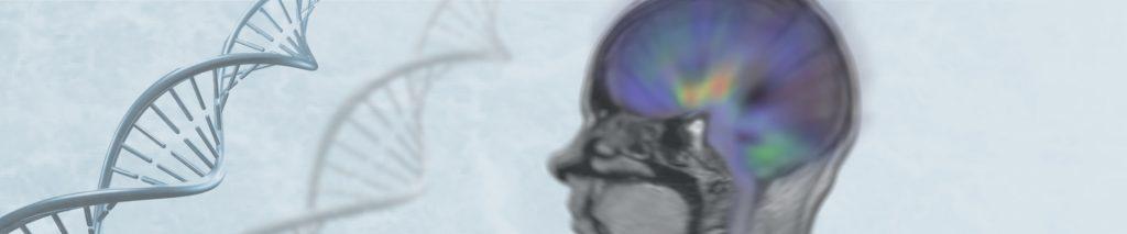 Άνοια και Αλτσχάιμερ: είναι το ίδιο νόσημα;